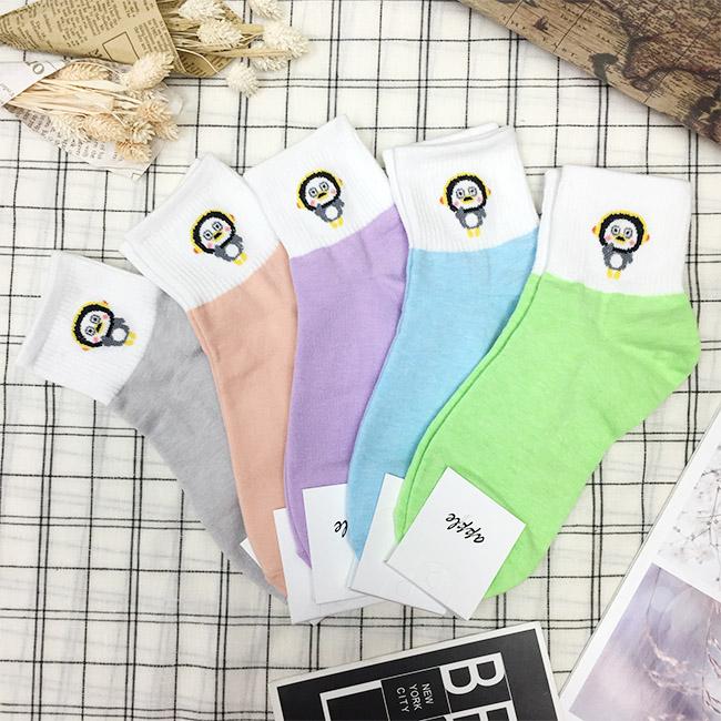 韓國 卡通 企鵝 灰 橘 紫 藍 綠 中長襪 成人襪 五款 韓國進口