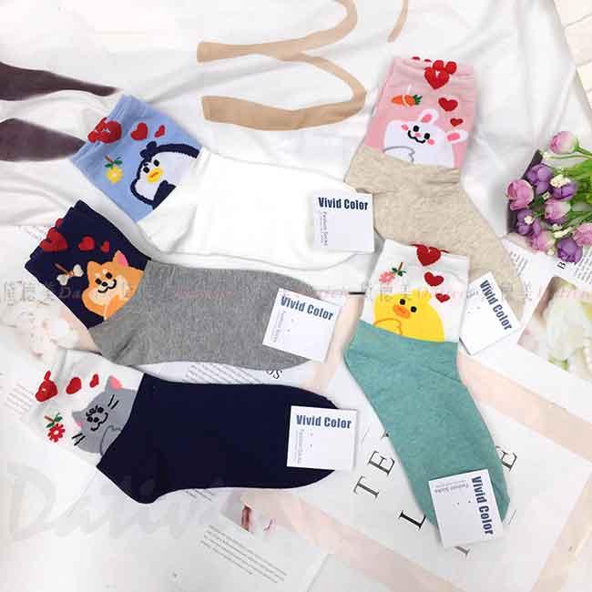 韓國襪 動物 貓咪 狗狗 企鵝 小雞 兔子 大臉 中長襪 成人襪 襪子